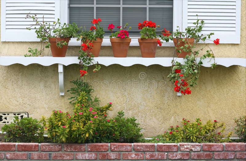 Window Shelf With Potted Plants royalty free stock photography