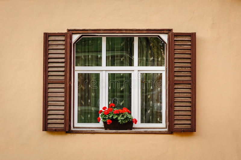 Window with shutters and flower. At beige wall stock image