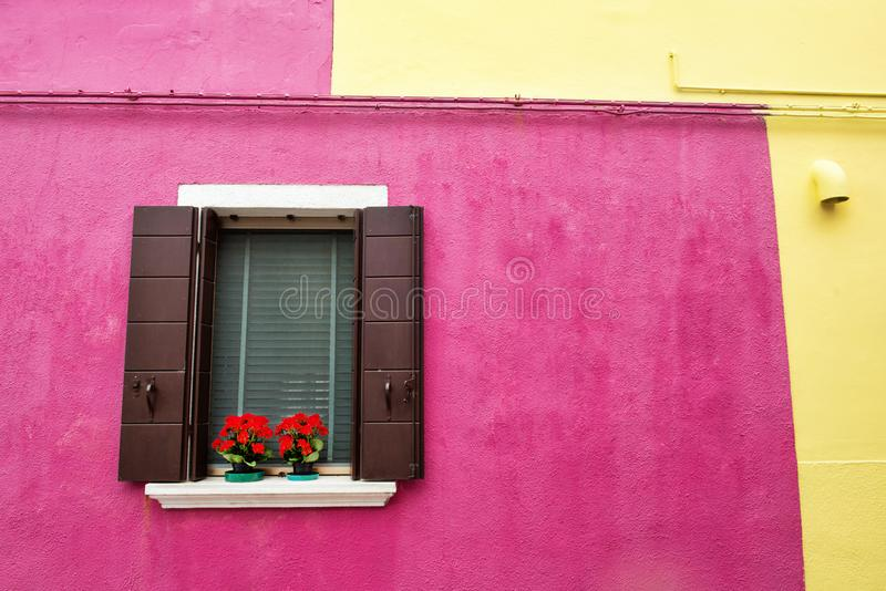 Window with shutters and flowers on a pink and yellow wall. Colorful houses on Burano island near Venice, Italy royalty free stock photography