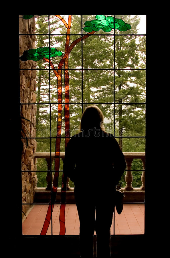 Download Window Solace stock photo. Image of glass, forest, contemplation - 170922