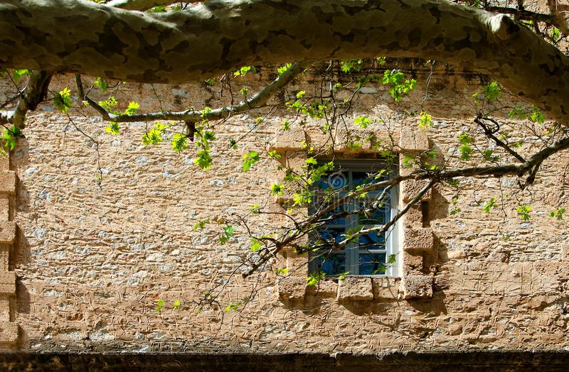 Window on stone wall. Window on an ancient stone wall and branches in front of it,Greece royalty free stock photo