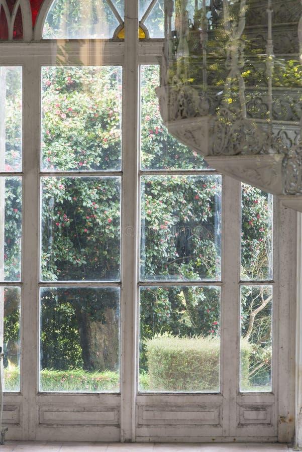 Window to the garden stock photo