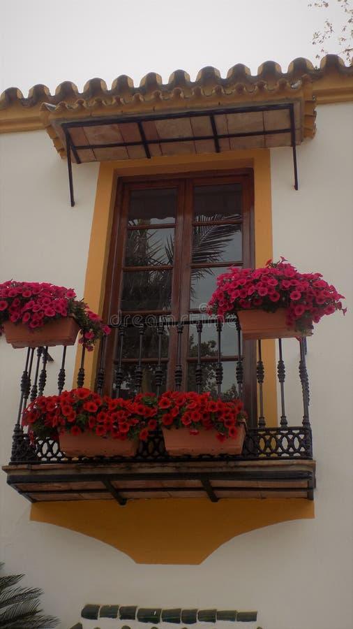Window-Torremolinos -Botanic gardens-Molino del Inca-Andalusia. Window-Torremolinos-Botanic gardes--Molino del Inca-Andalusia-Spain stock photos