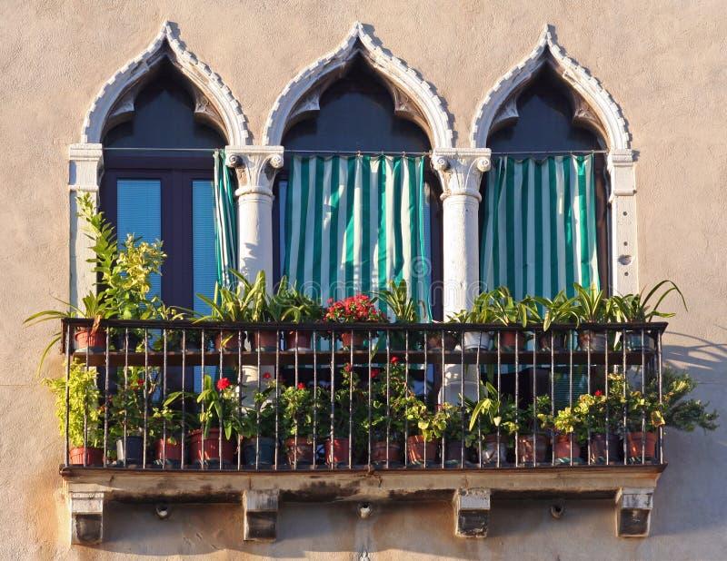 Window Of Venice Royalty Free Stock Image