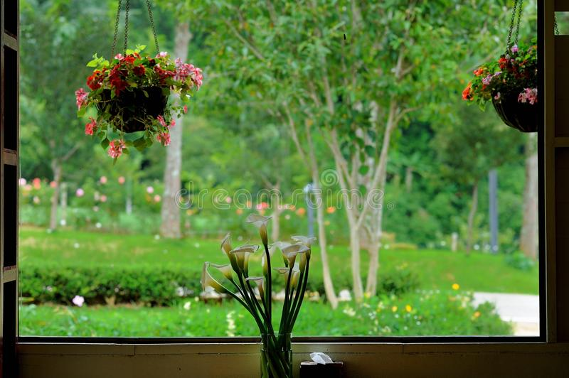 Window view. Landscape window view stock photography