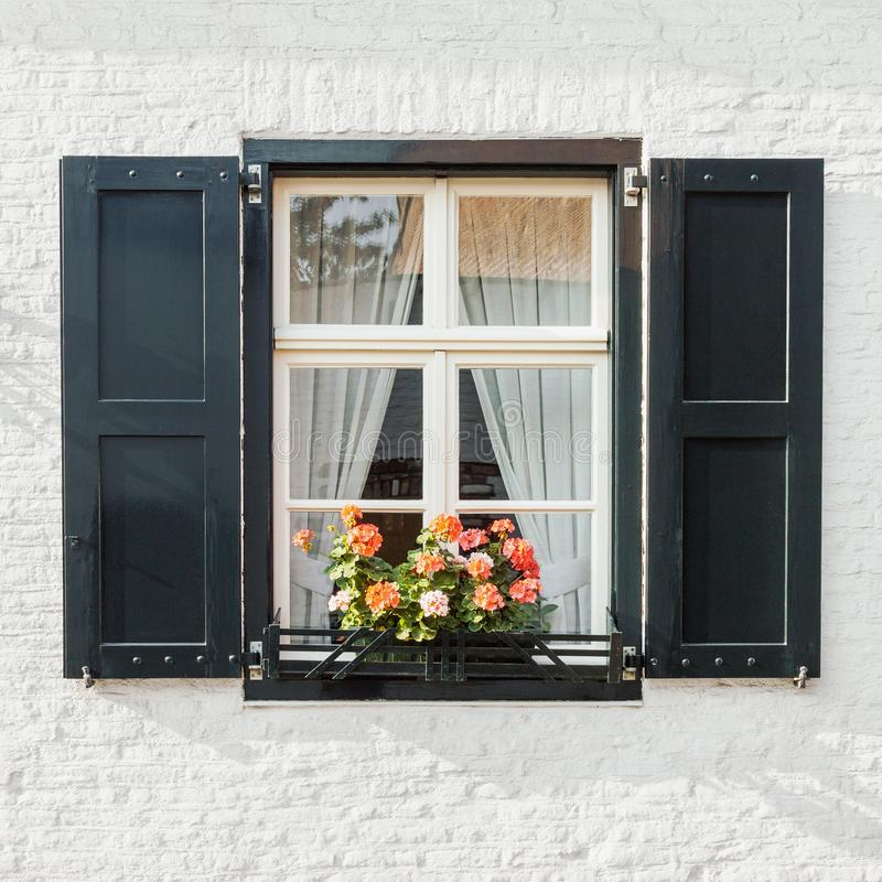 Window on white brick wall closeup with shutters and blooming flowers pot. Window on white brick wall with shutters and blooming flowers pot, front view royalty free stock photography