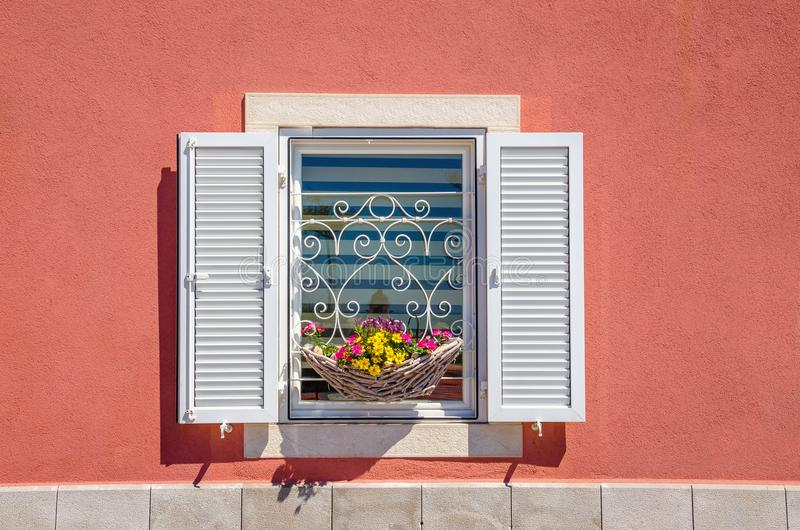 Window with white shutters and beautiful blooming flowers against a red wall. In sun royalty free stock image