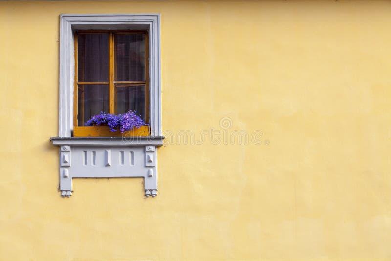 Window. Windou patern on yellow wall royalty free stock photos