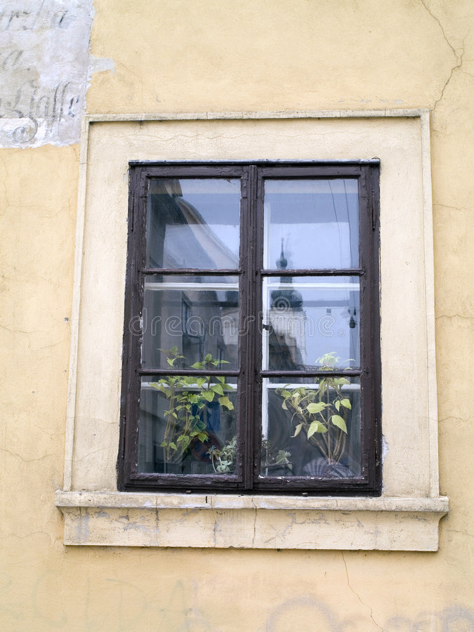 Free Window With Flowers Stock Images - 1681684