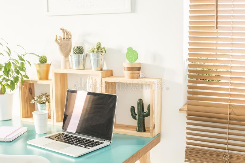 Window with wooden blinds in white room interior with home office desk with laptop, coffee cup, decor and fresh cactuses royalty free stock photo