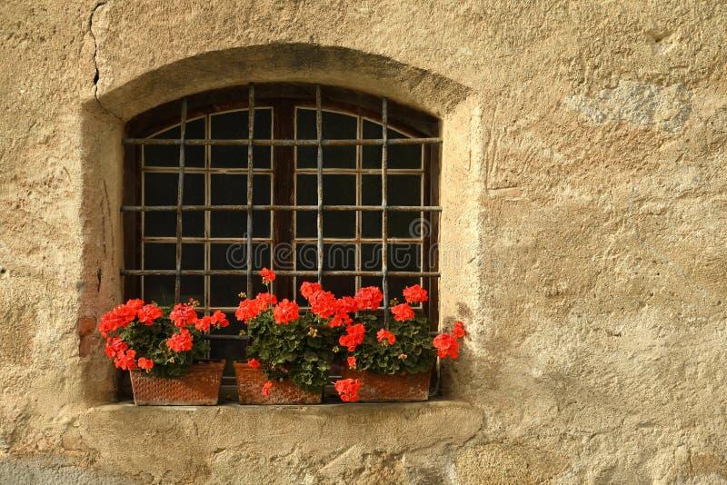 Windows с красными цветками в центре Brixen/Bressanone Больцано Италия стоковое изображение