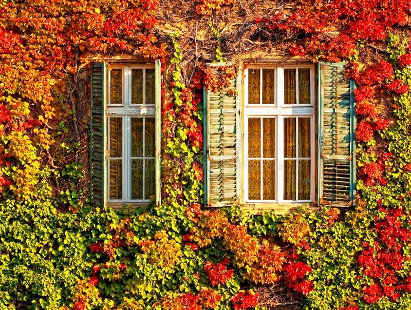 Windows fotos de archivo
