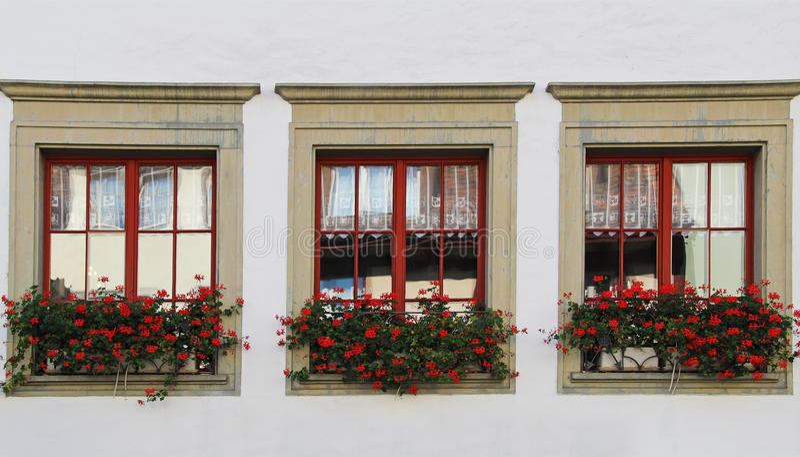 Windows avec des fleurs Chope en grès-être-rhein, Suisse image libre de droits