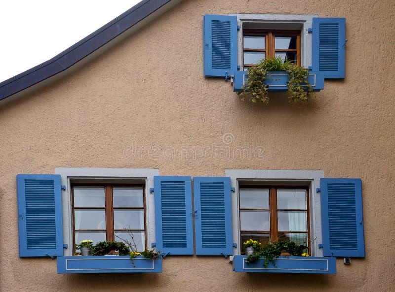 Windows azul con las flores Staufen im Breisgau Schwarzwald Alemania fotografía de archivo