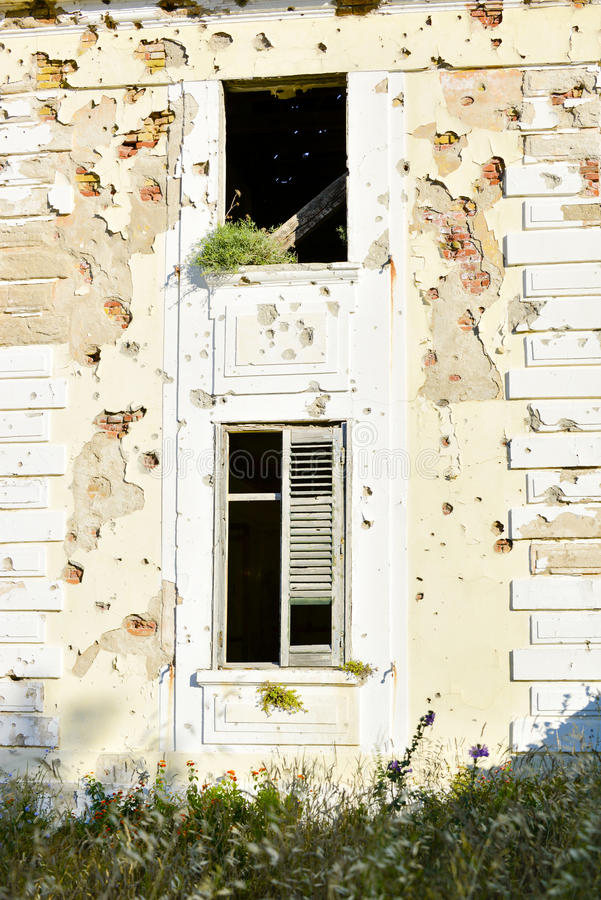 Windows With Bullet Impacts Stock Image