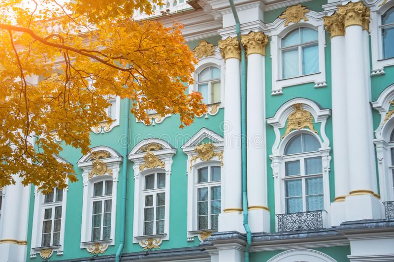 Windows and columns of the Hermitage of the Winter Palace with autumn maple.  royalty free stock photos