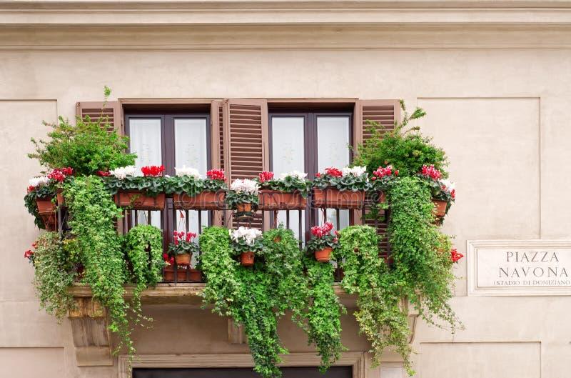 Windows com as flores na praça Navona imagem de stock