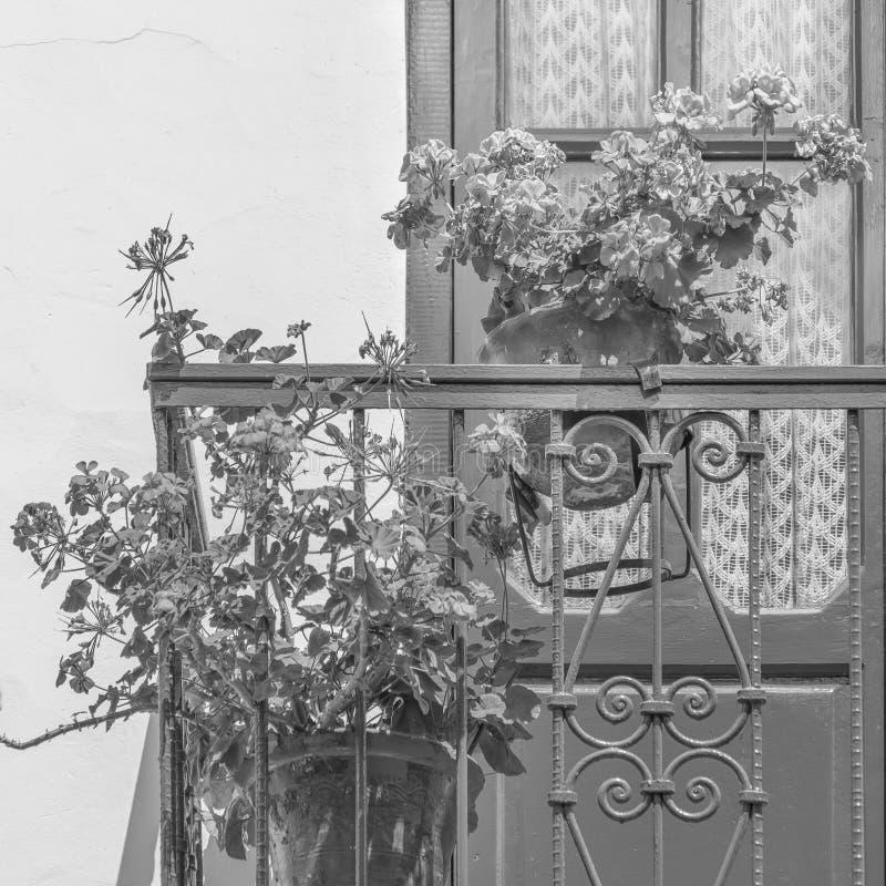 Windows com balcão e flores fotografia de stock royalty free