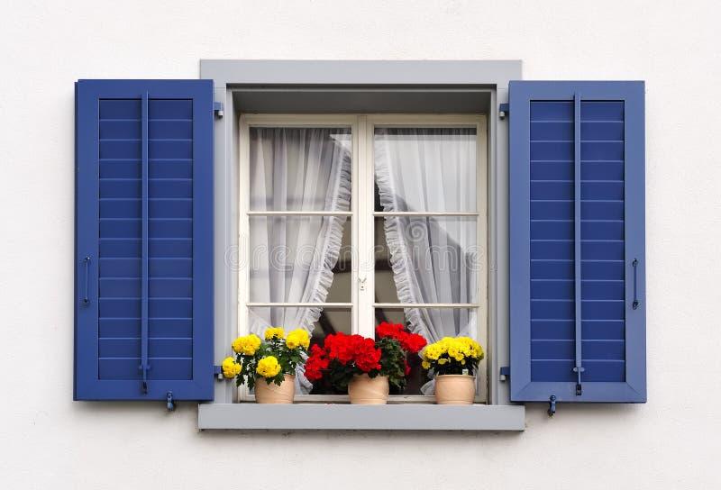 Windows com flores foto de stock royalty free