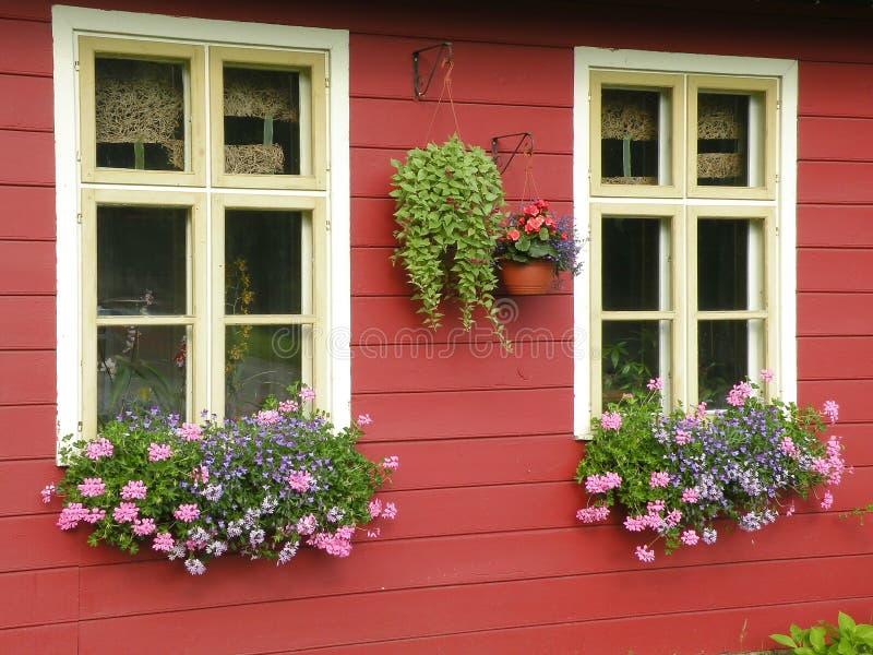 Windows con las flores fotografía de archivo libre de regalías