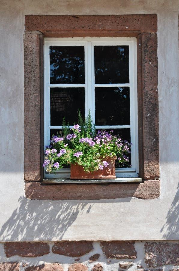 Windows de Alemanha fotografia de stock royalty free