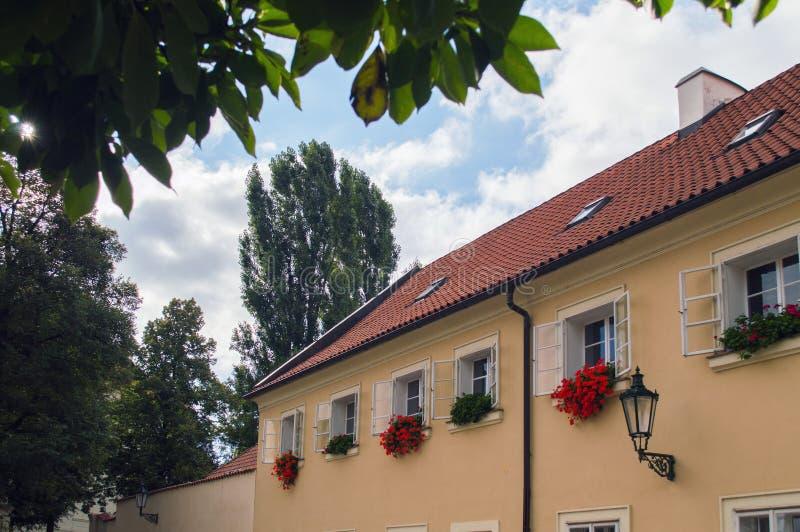 Windows dekorerade med röda blommor i blommaaskar fotografering för bildbyråer
