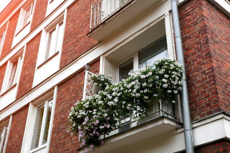 Windows der alten Stadt wird mit Blumen verziert lizenzfreie stockbilder
