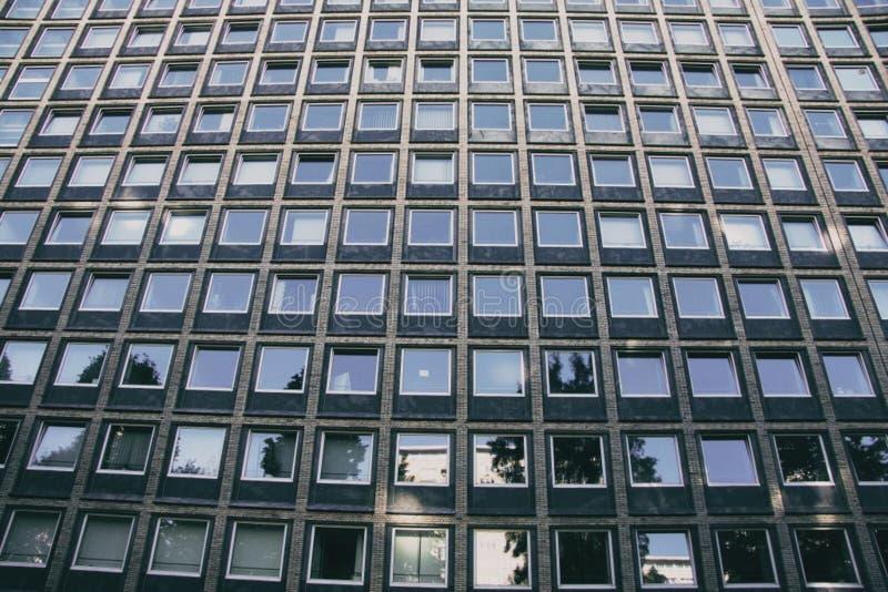 Windows im konkreten Gebäude stockfotografie
