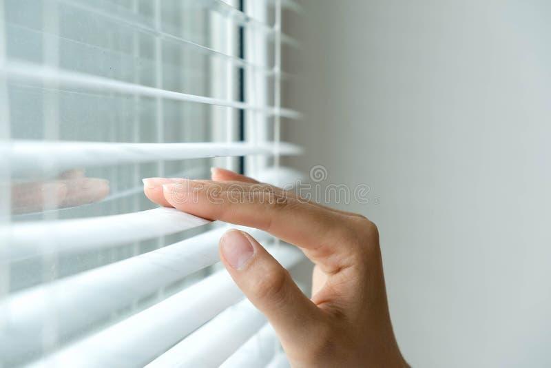 Windows-Jalousie Frau, die durch Jalousien späht Männliche Hand, die Latten von Jalousien mit einem Finger zu trennt stockfotografie