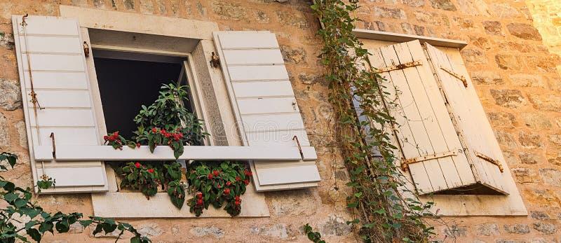 Windows med slutare och krukor med blommor i stenar väggen royaltyfri fotografi