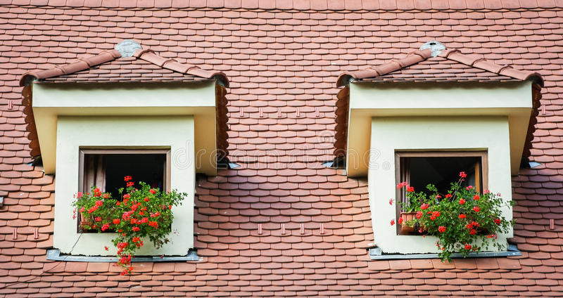 Windows mit Blumen stockbilder
