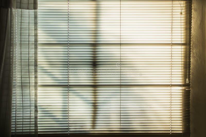 Windows och rullgardiner med solstrålar royaltyfri bild