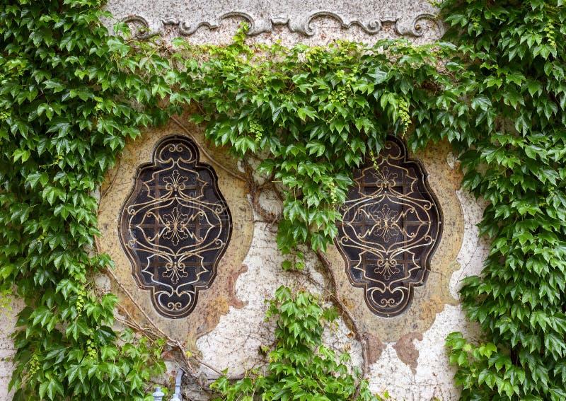 Windows omgav vid murgrönan på en vägg i trädgården av det Atellani huset, Museo Vigna di Leonardo, Milan arkivfoton