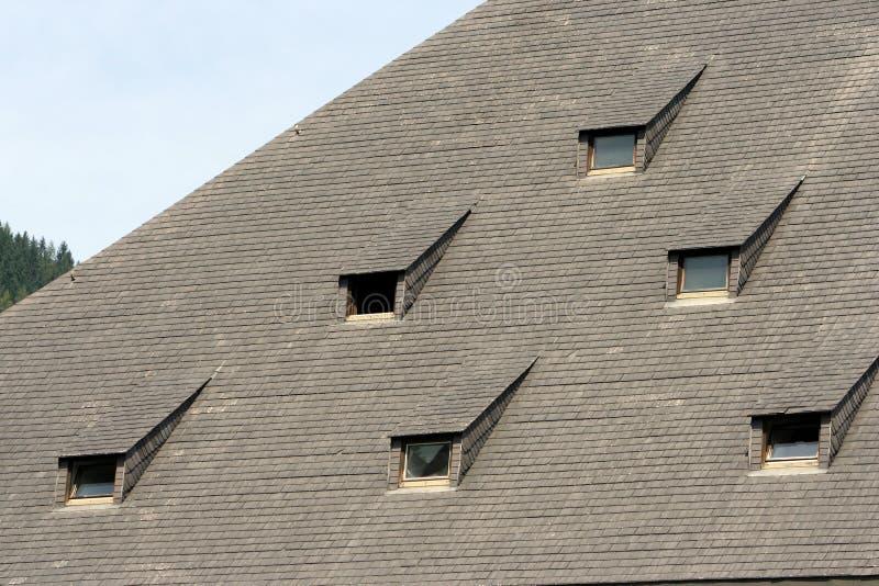 Windows sur le toit photo libre de droits