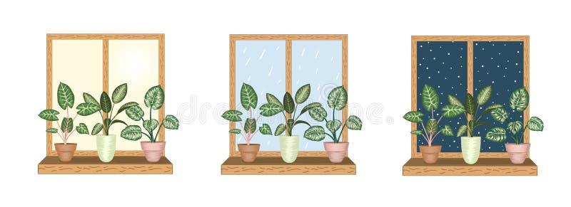 Windows z tropikalnymi houseplants w garnkach royalty ilustracja