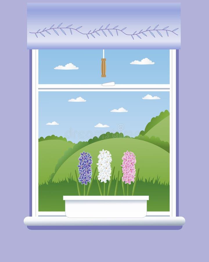 Windowsill del jacinto libre illustration