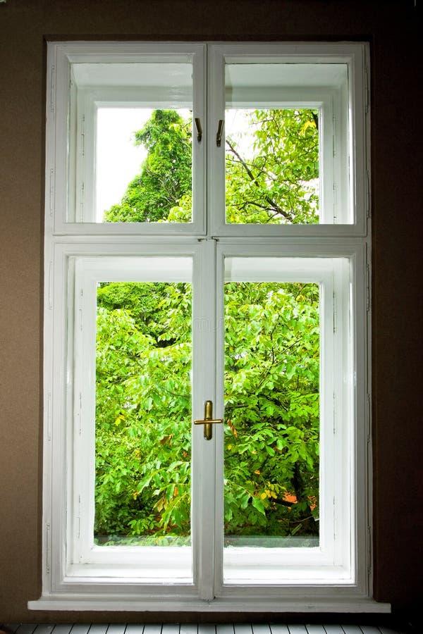 windowwindow стоковые изображения