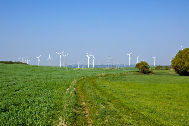 Windpark dans les domaines verts image libre de droits