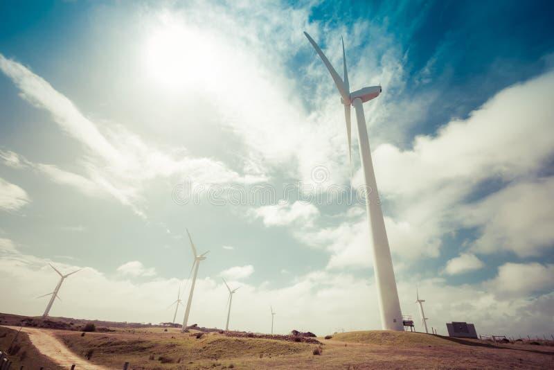 Windpark in Richmond, Australien an einem Tag der heißen Quelle lizenzfreie stockfotos