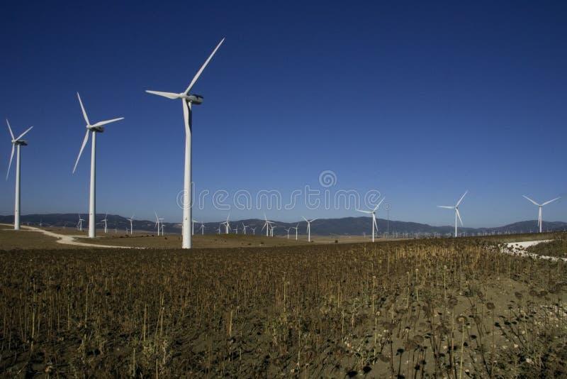 Windpark Tahivilla Spanien stockbilder