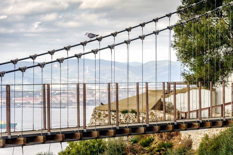 Windsor Bridge - bron för upphängning för Gibraltar ` som s lokaliseras i upperen, vaggar Gibraltar brittiskt utländskt territori royaltyfria bilder