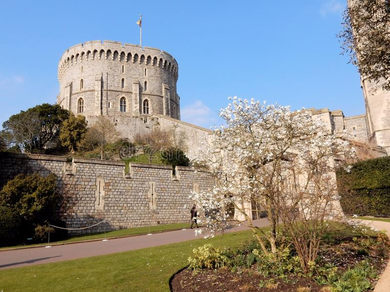 Royal palace Windsor Castle - Round Tower - Windsor - England - United Kingdom. Royal palace Windsor Castle , Round Tower in spring, stone fortification, Windsor stock photos