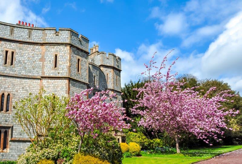 Windsor slottväggar i vår, London förorter, UK arkivbilder