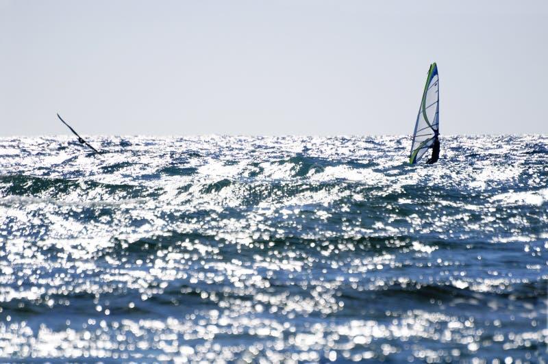 windsurf obraz royalty free