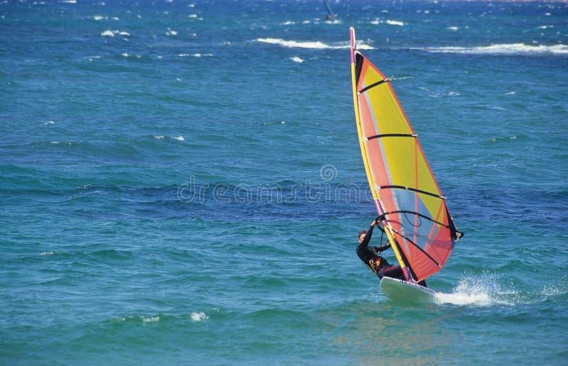 Windsurf fotografia de stock