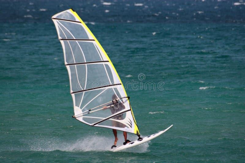 Windsurf in het strand stock foto