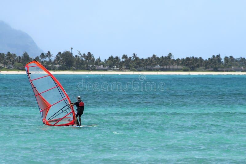Windsurf oben! stockbilder