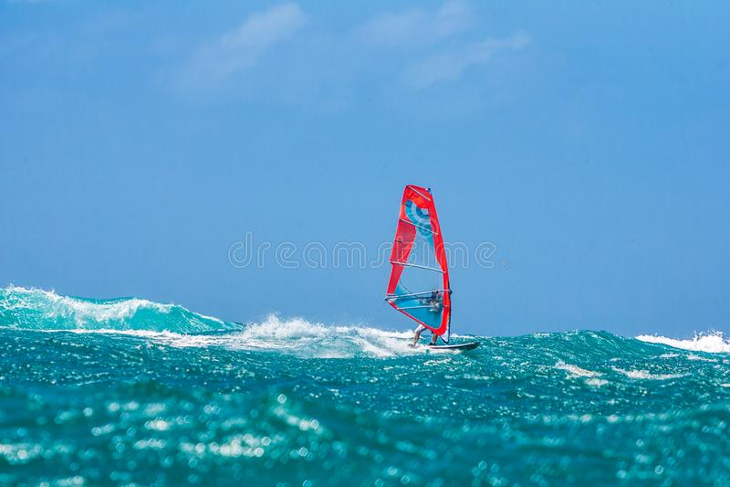 Windsurf photographie stock