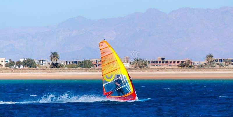 Windsurfen im blauen Wasser auf dem Hintergrund des Strandes mit Palmen und Berge in Ägypten Dahab Süd-Sinai lizenzfreie stockfotografie