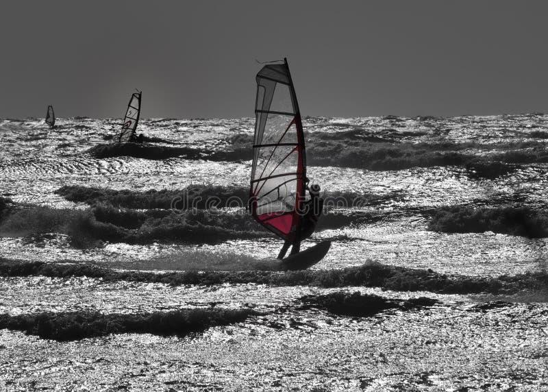 Windsurfer в силуэте стоковое изображение rf